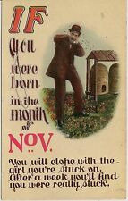 """If You Were Born In The Month Of November..."" Humorous Postcard"