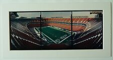 The NY Jets at Giants Stadium in the Meadowlands, NFL, Panoramic Color Photos