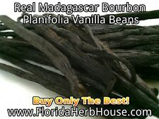 Buy Planifolia Vanilla Beans - Our Best Madagascar Bourbon - 1 oz (28g)