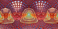 "Poster for Alex Grey Art Painting The Human Body Art Silk Fabric 47x24"" Decor 15"