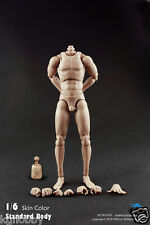 COOMODEL 1/6 Male Narrow Shoulder Extra Height Figure Body fit hot toys head