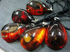 5pcs fashion insect real golden scorpion&spider amber drop pendant&necklace