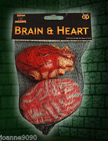 HALLOWEEN ZOMBIE HORROR PLASTIC FAKE BLOODY BRAIN AND HEART SURGEON COSTUME PROP