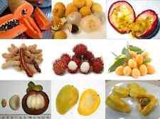 MIX of 40 Tropical Fruit Plant Asian Seeds Mangostee,Marian plum,mango,Jackfruit
