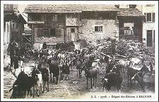 CARTOLINA - PARTENZA DELLE CAPRE PER L'ALPEGGIO A SALVAN, IN SAVOIA - 1903