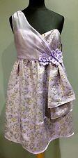 Luella Dress BNWT Size UK10
