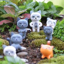 1x Angry Cat Figures Decor Miniature Figurine Mini Fairy Garden Resin Craft hcu
