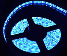 Waterproof  Blue 5m 3528 SMD 300 LED 12V DC Reel  Strip Lights Tape Roll J103