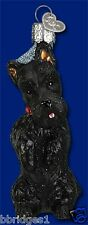 *Scottish Terrier* Dog Pet (12381) Old World Christmas Glass Ornament- NEW