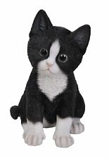 Vivid Arts - PET PALS CAT & PET CARRIER BOX - Black & White Kitten