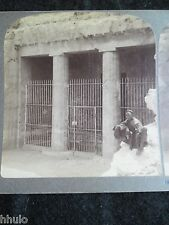 STA050 Egypte Tombeau d'un seigneur feudal 1904 STEREO albumen Photo Stereoview