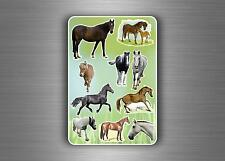 Stickers childrens animal horse decoration kids labels scrapbook card making