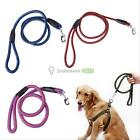 Durable Heavy Duty Strong Dog Pet Braided Nylon Rope Lead Leashes Random Color