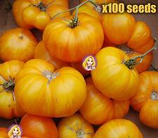 Pineapple Tomato Seeds Rare Hawaiian Unusual Fruit Plant HEIRLOOM 100 Seeds