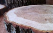 1x Real wood Log Slice Table Centrepiece Tree Oak  Rustic Chic 28-31 x2.5Cm