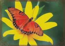 Modern-Wide-Linen-Butterflies-P4-Pretty Orange Butterfly-Swap Playing Card