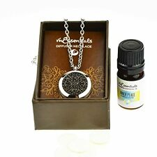 Wrought Iron Essential Oil Diffuser Necklace Stainless Steel Locket Pendant 24