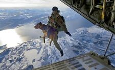 Navy Seal Team 6 & Cairo The Belgian Malinois Free Fall 8.5x11 Photo A-1281