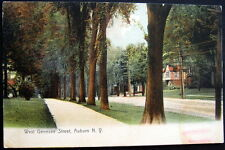 AUBURN NY ~ 1908 Un-Paved WEST GENESEE STREET ~ Homes  Residences