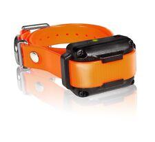 Dogtra IQ-PLUS-RX IQ Plus Additional Receiver Orange Strap Dog Shock Collar