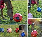 Hay Play Horse Feeder - FREE P&P
