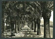 Diano Marina( Imperia ) : Viale delle Palme -  cartolina viaggiata nel 1955
