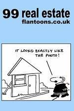 99 Real Estate Flantoons.co.uk : 99 Great and Funny Cartoons about Property...