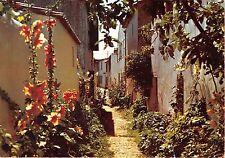 BR2349 France Ile de Re Ars Venelle en fleurs