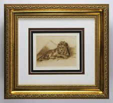 Attractive REMBRANDT 1800s Antique Print The Great Lion Study GALLERY FRAMED COA