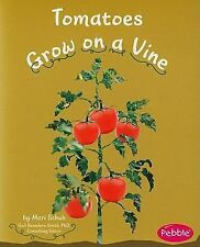 Tomatoes Grow on a Vine (Pebble Books: How Fruits and Vegetables Grow)-ExLibrary