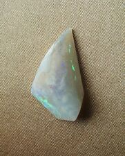 Australian Opal Fire Fossil Shell Piece ~ 2.7cm ~ Collector's SPECIAL OFFER