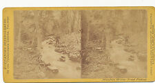Purviance's PA Central RR Stereoview ca. 1870 * Trout Fishing Mt. Stream #340