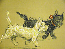 Cecil Aldin 1910 WEST HIGHLAND TERRIER Trotting Alongside Cute Scotty Art Matted