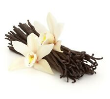 "50 Vanilla Beans Extract Grade B Gourmet Madagascar Planifolia Bourbon 6-7"" FREE"