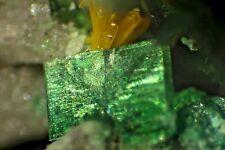 Kasolite(TL), Torbernite, Malachite--Superb Micromount , Musonoi, D. R.Congo