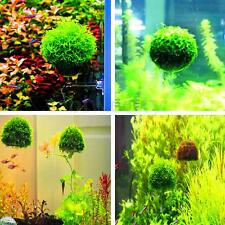 Aquarium Suspension Moss Floating Ball Fish Tank Live Plants Cultivation Holder