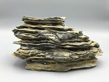 Natural polished Viewing stone suiseki-California desert multi layer island