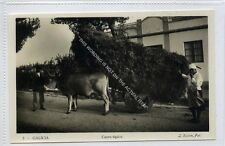 (Ga2827-100) Real Photo of GALICIA, Carro Tipico, Ox Cart, Spain c1940 EX