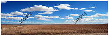"HO Scenery Background Field w/clouds 12"" high x 36"" wide poly poster media"
