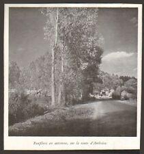 37 AMBOISE IMAGE LES BORDS DE LOIRE 1940 PRINT