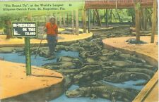 St Augustine, FL The Round Up at Worlds Largest Alligator-Ostrich Farm, Lot of 2