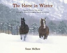 The Horse in Winter: How to Care for Your Horse During the Most Challenging Seas