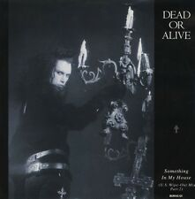 """Dead Or Alive Something In My House Limited Uk 12"""""""