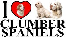 I LOVE CLUMBER SPANIELS Car Sticker By Starprint - Featuring the Clumber Spaniel