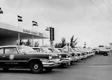 1960 Florida New Dodge Highway Patrol Cars lined up at dealer 5 x 7  Photograph