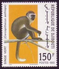 Djibouti Dschibuti 1993 Vervet Monkey, MNH, Sc 712, Mi 582, CV €80