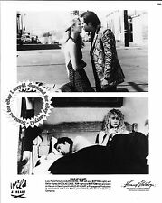 Lot of 3b, NICOLAS CAGE, LAURA DERN mint stills WILD AT HEART (1990) GET SIGNED!