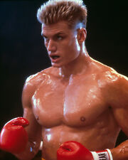 Lundgren, Dolph [Rocky IV] (41828) 8x10 Photo