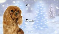 Cavalier King Charles Christmas Labels-Starprint No 2