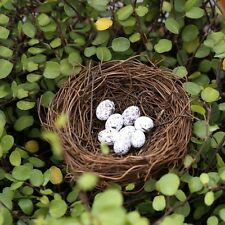 Miniature Bird Nest With Eggs Fairy Garden Animal Ornament Terrarium Supplies